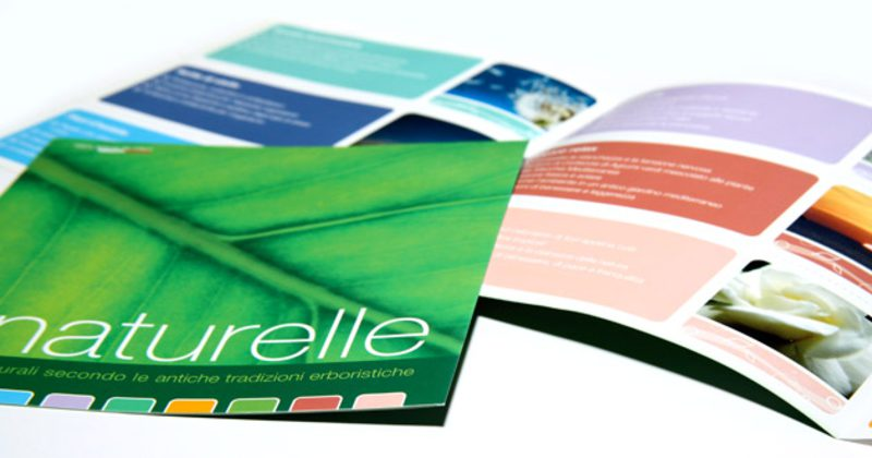 Gioel Brochure